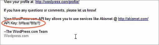 APIKeyメール